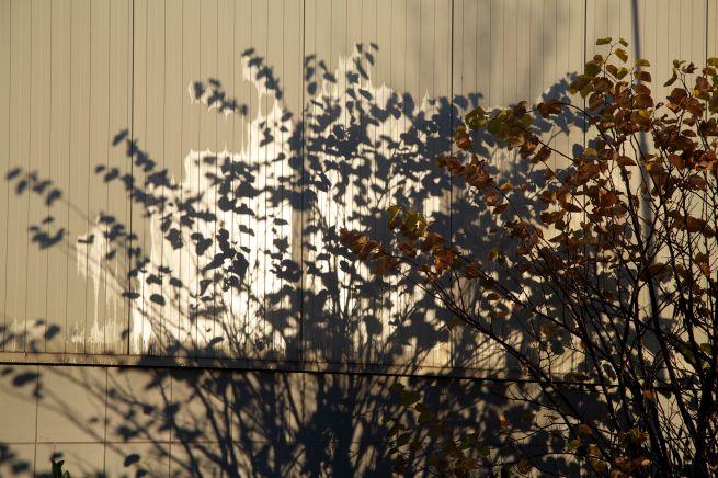 30-11-2012 schaduw