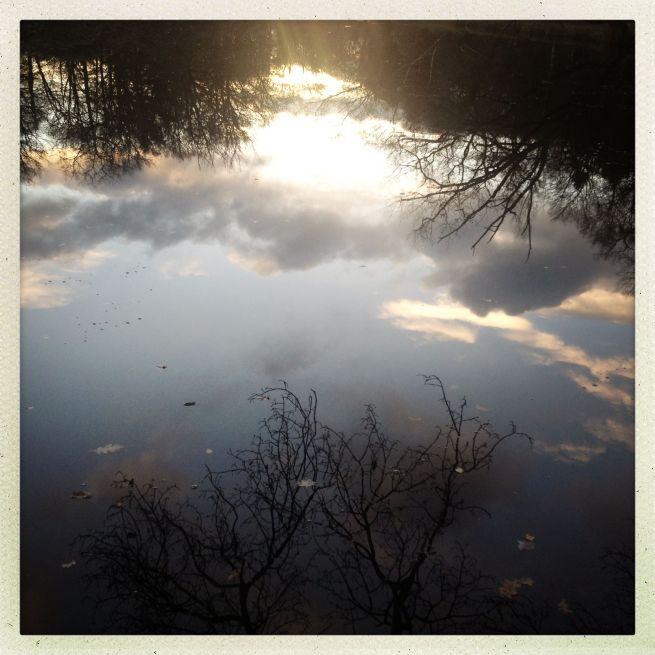 02-12-2012 stille plekken 2