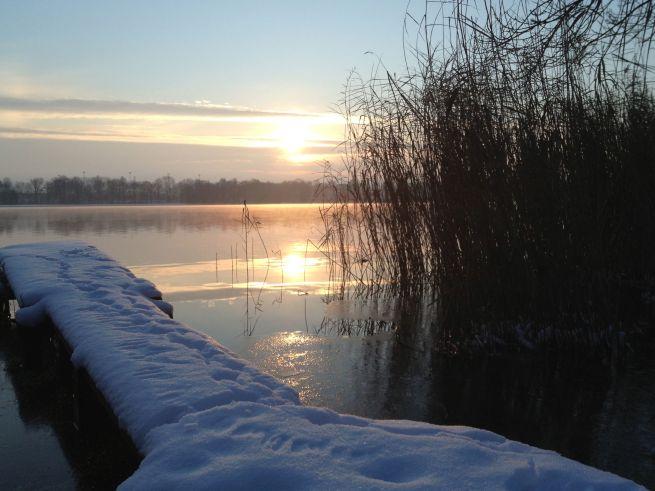 2013-01-16 ochtendlicht 2
